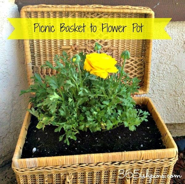 picnic basket to flower pot