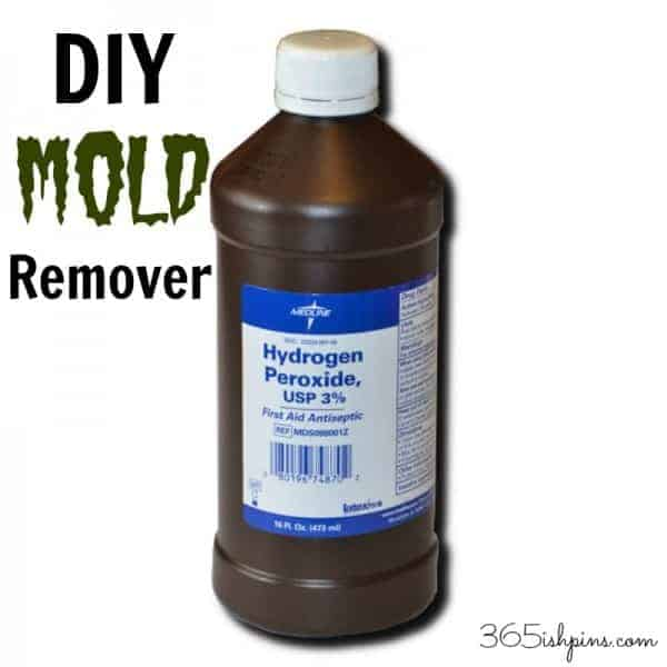 Day 336: DIY Mold Remover