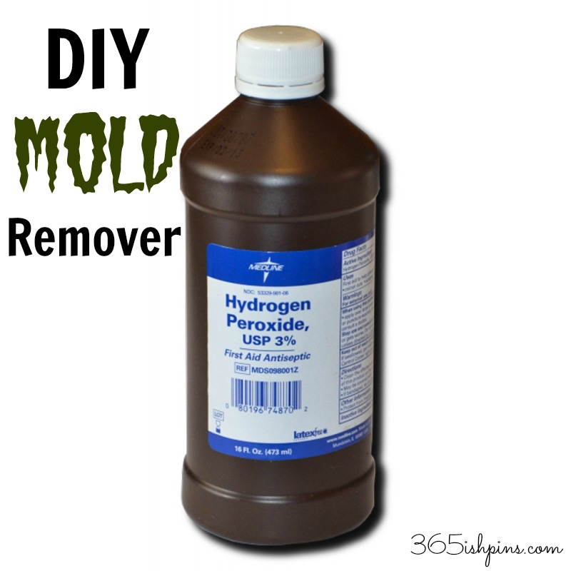 Day 336: DIY Mold Remover - Simple and Seasonal