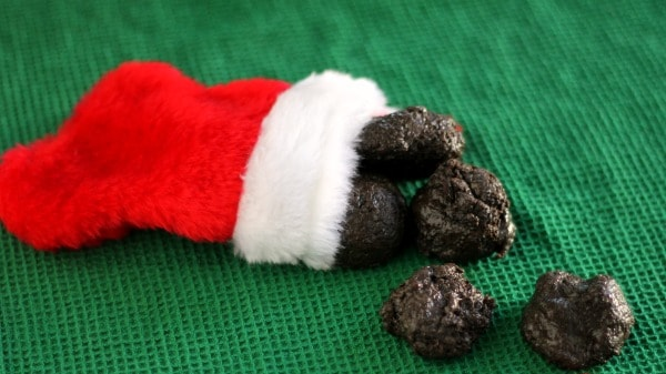 lumps of coal in stocking