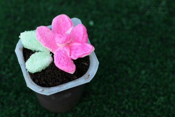 easy marshmallow flower