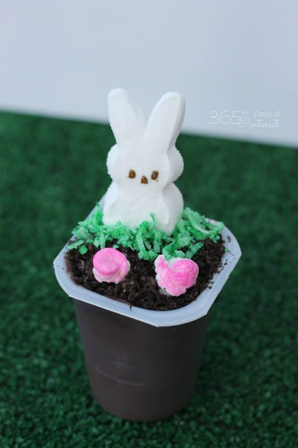 marshmallow flower garden