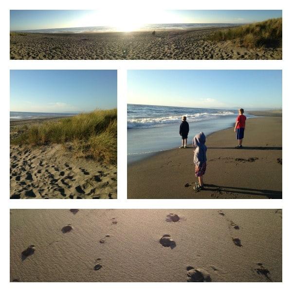 Eureka beach collage