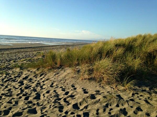 Eureka beach resized