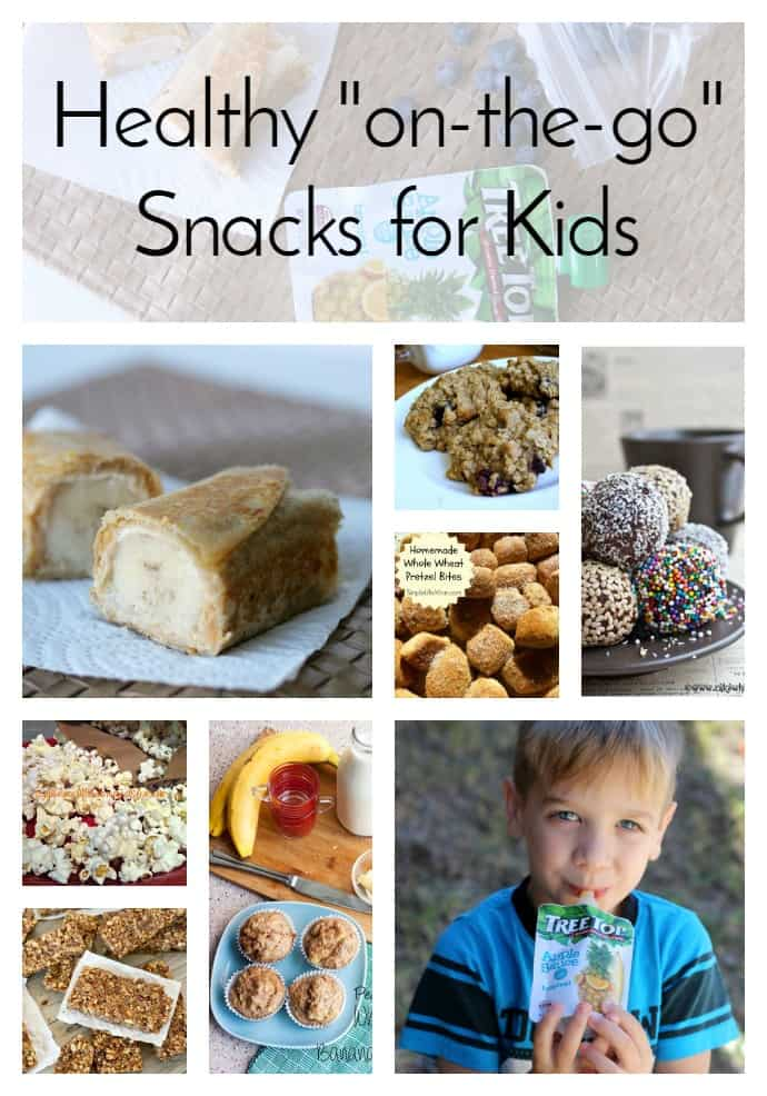 healthy on the go snacks for kids