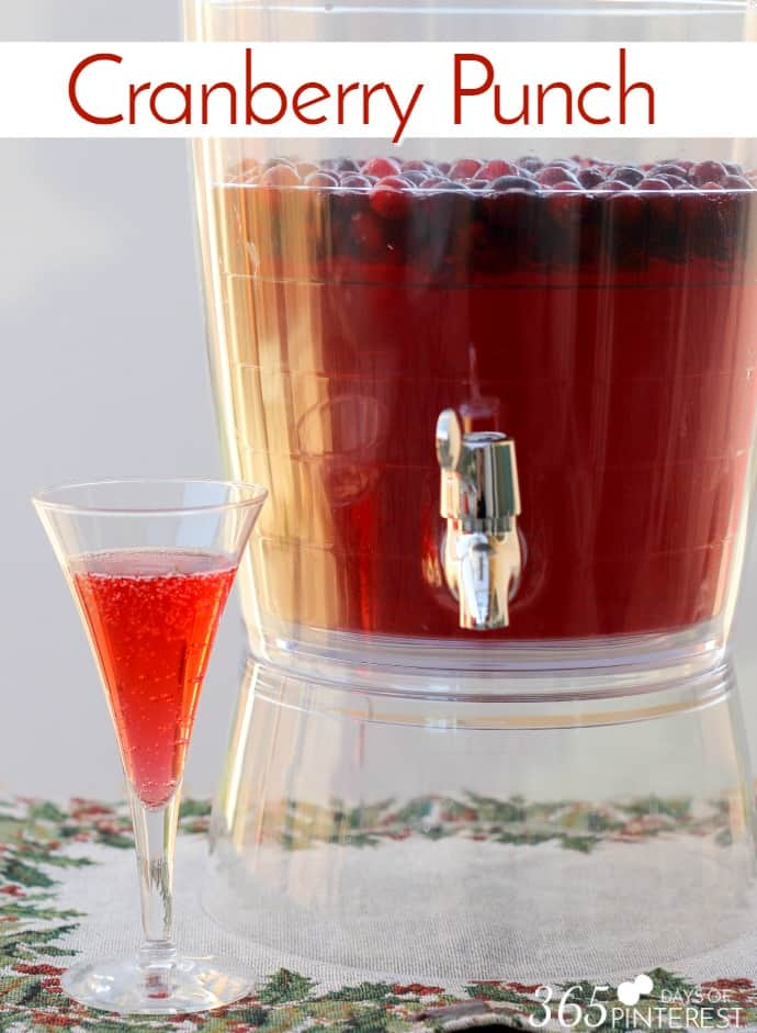 cranberry-punch-pin