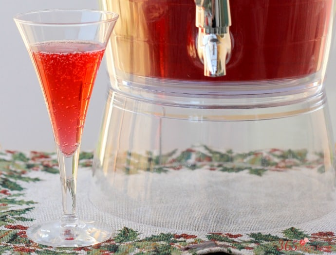 cranberry-punch-wide